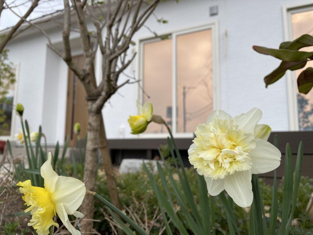 【玉川】春モデルハウス